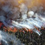 Travel Alerts, Evacuation Orders and Arson Impact Travel Insurance for Australia