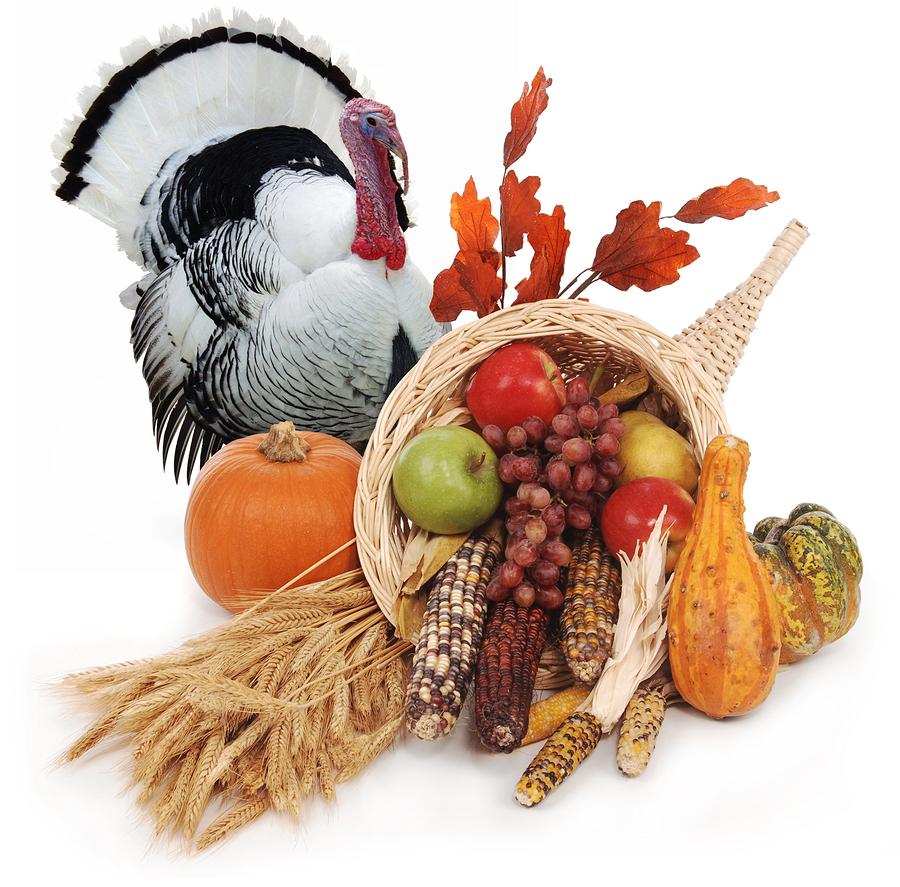 Thanksgiving Day Travel
