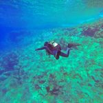 Does Travel Insurance Cover Scuba Diving? Squaremouth Explains
