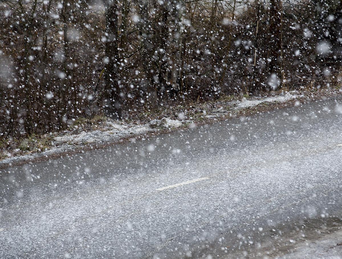 Winter Storm Center